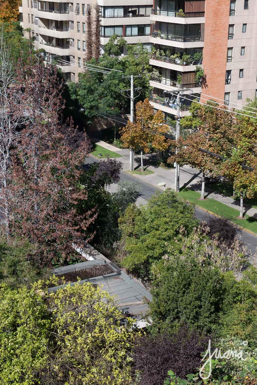 piso-cruz-del-sur-29