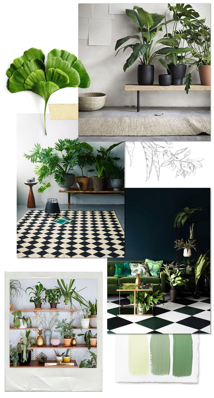 Jardín Interior: Dos razones para introducir plantas a nuestra casa.