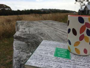 Los cuadernos para cultivar el ocio