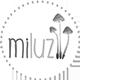 Marca Colaboradora con La Casa de Juana: MiLuz