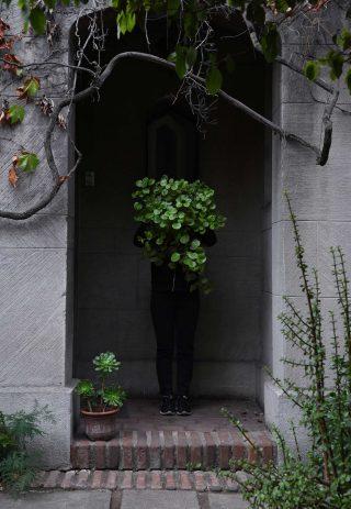 Habitar Con Naturaleza: Taller Casa Verde