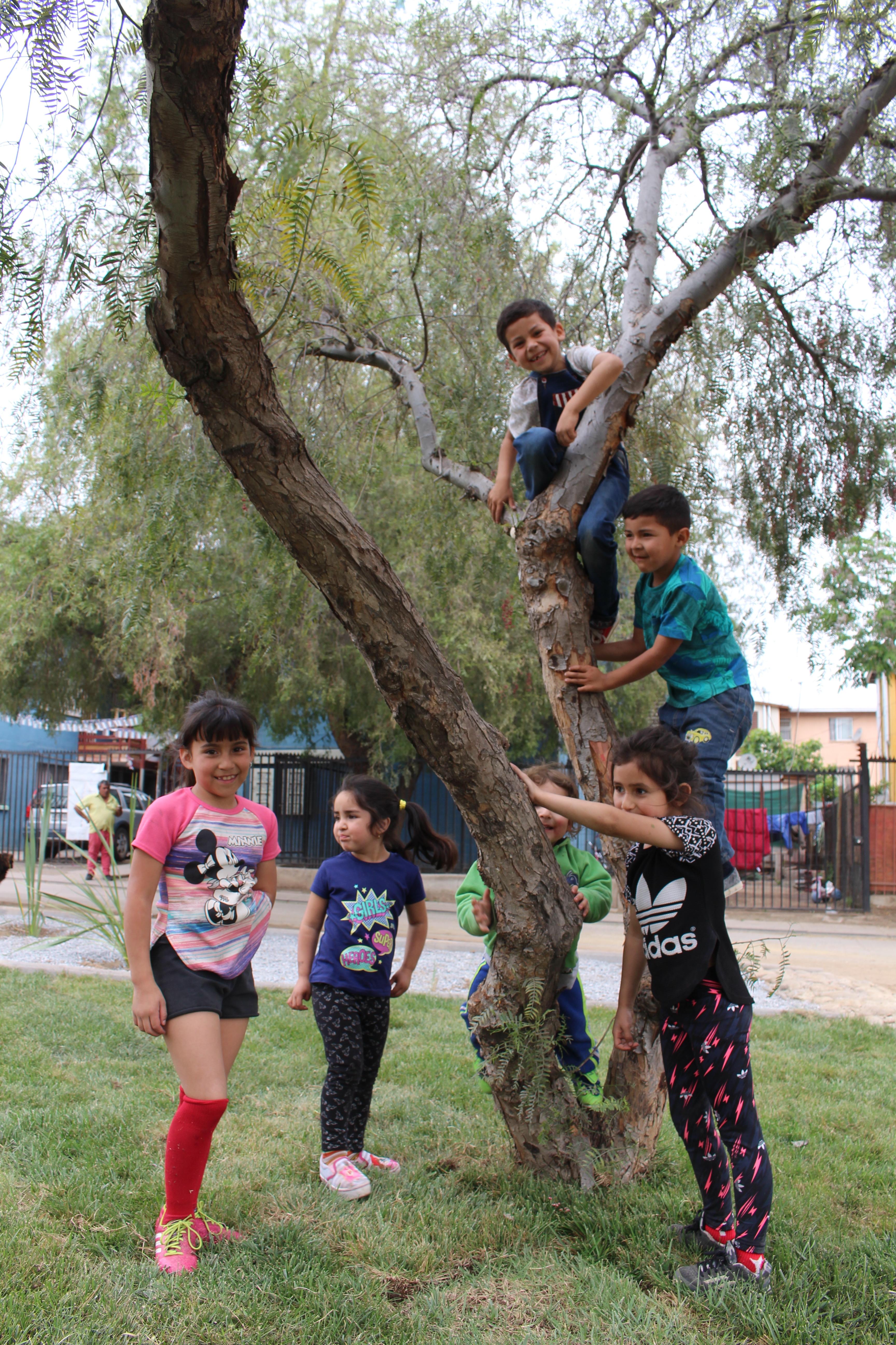 Diversidad Territorial Y Participación Comunitaria:  Conjugando Anhelos Y Realidades